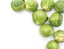 Raw Brussels sprout isolated. Raw Brussels sprout heads top view isolated on white background on right side Stock Photography
