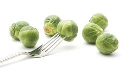 Raw Brussels sprout isolated. Raw Brussels sprout one head impaled on a fork isolated on white background Royalty Free Stock Images