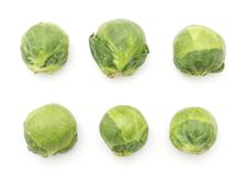 Raw Brussels sprout isolated. Brussels sprout six heads pattern top view isolated on white background Royalty Free Stock Image