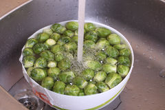 Raw Brussels sprouts Royalty Free Stock Photos