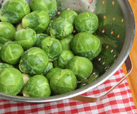 Raw Brussels Sprouts Vegetable Washed Stock Image