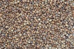 Raw buckweat groats healhty food background. Raw dried buckweat groats healhty food background stock photo