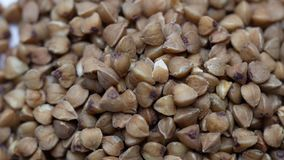 Raw buckwheat grains rotating on white background. stock video