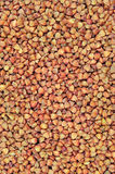 Raw buckwheat groats background, dry cereal seeds, large vertical detailed textured macro closeup abstract grain texture pattern Stock Photo