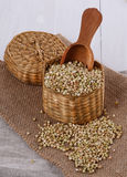 Raw buckwheat in a straw basket on wooden background. Organic raw buckwheat in a straw basket on a burlap cloth over white wooden background royalty free stock images