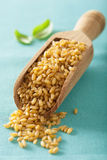 Raw bulgur in a scoop Royalty Free Stock Photo