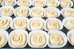 Raw buns Royalty Free Stock Photography