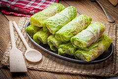 Raw cabbage rolls. Royalty Free Stock Image