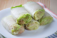 Raw cabbage rolls on a white plate. Cabbage rolls stuffed with meat and rice prepared for cooking royalty free stock images