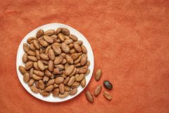 Raw cacao beans. On a white plate against red textured paper background with a copy space stock photos