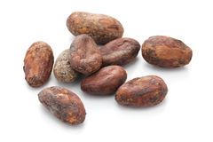 Raw cacao cocoa beans Stock Images