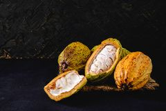 Raw cacao and cocoa pods. On black background stock photos