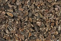 Raw Cacao Nibs. 100% pure cacao nibs: organic and raw. The bean of the cacao plant is the nutritional and flavorful source for all chocolate and cocoa products royalty free stock photo