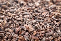 Raw cacao nibs background. Background of raw cacao nibs - life size macro with a selective focus stock photo