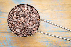 Raw cacao nibs in metal scoop Royalty Free Stock Photos