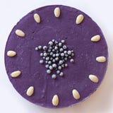 Raw cake. Raw vegan blueberry frozen cake Royalty Free Stock Photography