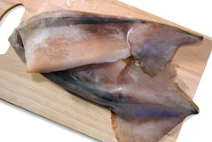 Raw calamary. Close-up on chopping board. Isolated Stock Images