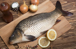 Carp on the cutting board Stock Photography
