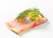 Raw carp fillet Royalty Free Stock Image