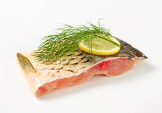 Raw carp fillet Royalty Free Stock Photography