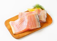 Raw carp fillets Stock Images