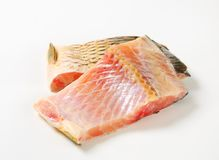Raw carp fillets Royalty Free Stock Image