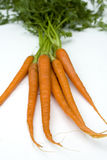 Raw carrots Royalty Free Stock Images
