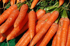 Raw carrots Stock Photo