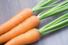 Raw carrots with green tops Stock Images