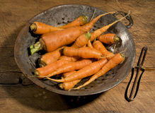 Raw carrots in old colander Stock Photography