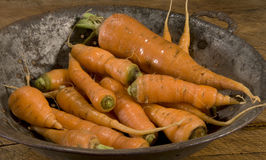 Raw carrots in old colander Royalty Free Stock Photo