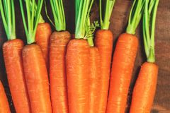 Raw Carrots  on rdark wooden background. Close up. A bunch of c. Arrots Stock Images