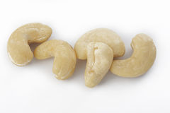 Raw cashew nut Stock Images