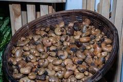 Raw cashew nuts closeup Royalty Free Stock Photography