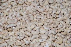 Raw cashew nuts closeup Stock Photography
