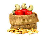 Raw cashew nuts and Fresh Cashew Nut pour from sack Stock Image