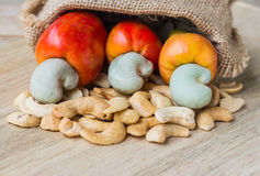 Raw cashew nuts Fresh Cashew Nut pour from sack Royalty Free Stock Photo