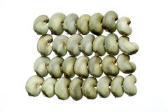 Raw cashew nuts royalty free stock image
