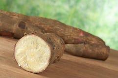 Raw Cassava on Wood Stock Photography