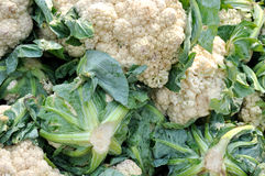 Raw cauliflower Stock Photo
