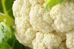 Raw cauliflower Royalty Free Stock Photo