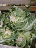 Raw cauliflowers. Cauliflowers at farmer`s market Royalty Free Stock Photos