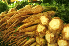 Raw celery and parslet roots heap Stock Photo