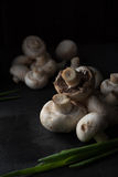Raw champignons bacground. Photo of Raw champignons bacground Stock Photos