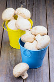 Raw Champignons Royalty Free Stock Photography