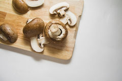 Raw champignons Royalty Free Stock Image