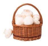 Raw champignons Stock Photo