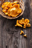 Raw chanterelles. In basket on wooden texture stock photo