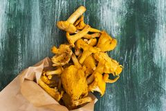 Raw chanterelles over wooden background. Heap of raw chanterelles over wooden background. Top view, space for text Royalty Free Stock Image