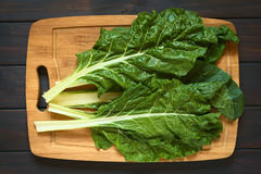 Raw Chard Leaves Stock Photos